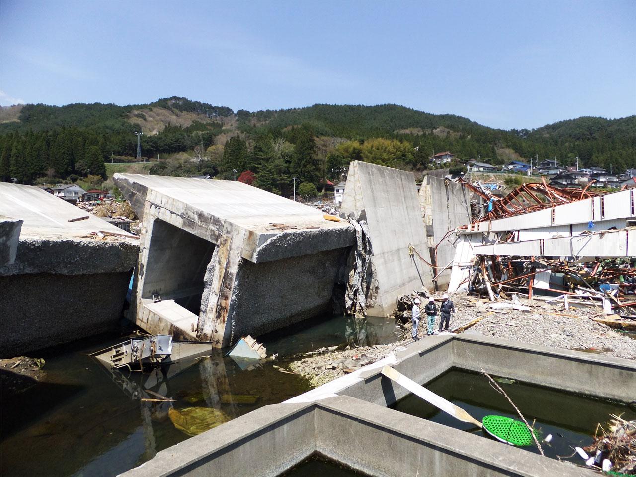 漁港側から見た防潮堤倒壊の様子